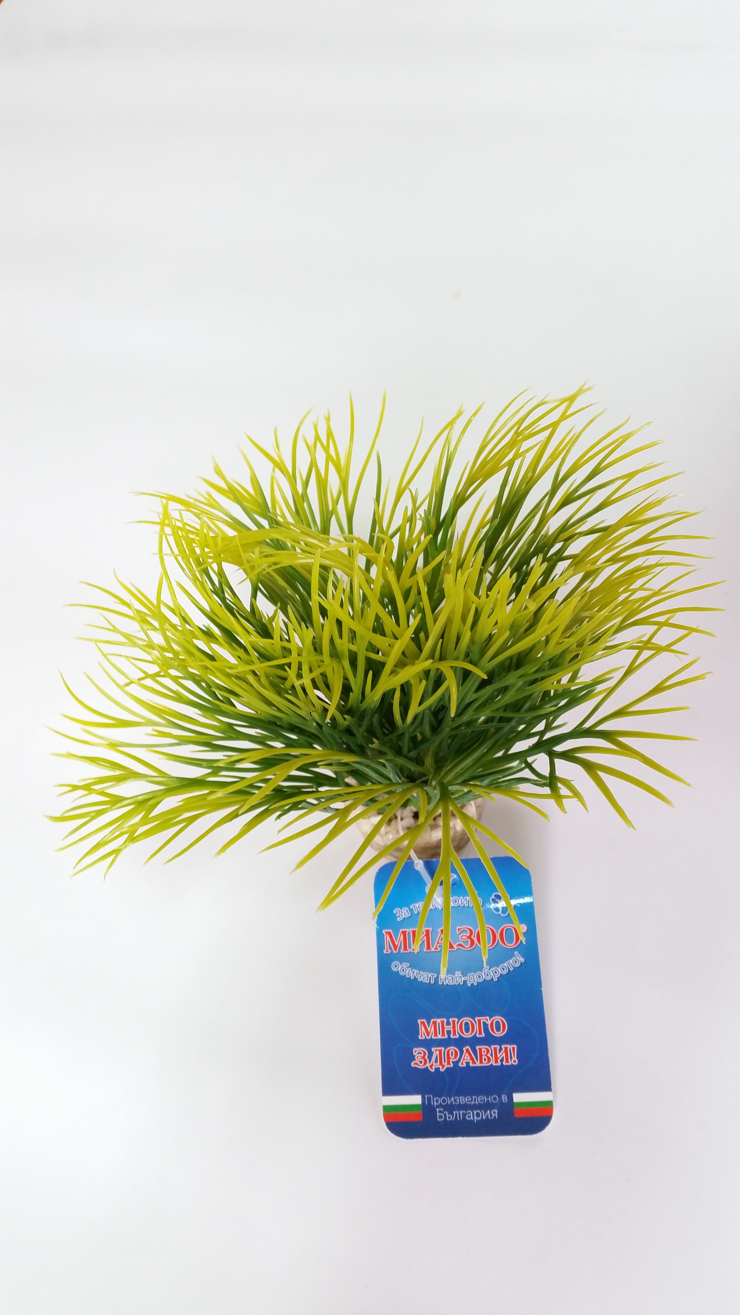 Растение Aquatic Grass 10см от Sydeco, Франция